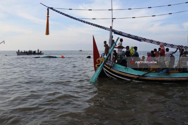 Wisata Dadakan Paus Terdampar di Pantai Situbondo