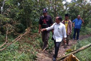 Staf ahli KLHK Tinjau Posko dan Pohon Konservasi Laskar Hijau yang Dirusak Orang