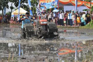 Balap Traktor Sawah
