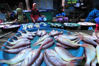Harga Ikan Kembali Naik