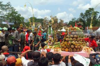 Destinasi Wisata Festival dan Sedekah Bumi Durian di Sumberjambe Jember (Video)