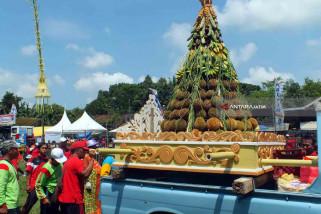 Festival dan Sedekah Bumi Durian Jember