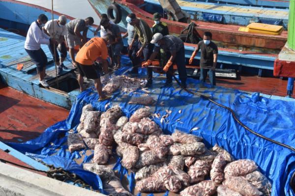 Satuan Patroli Lantamal V Musnahkan Barang Bukti Ikan Campuran 30 Ton