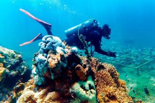 Fishdic Unibraw Malang Akan Laksanakan Ekspedisi Pulau Moyo