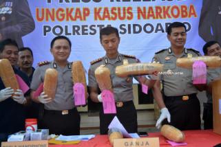 Polisi Sidoarjo Tangkap Pengedar Ganja