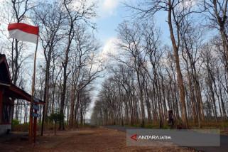 26 Dusun di Bojonegoro Belum Teraliri Listrik PLN