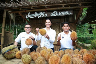 Rini Soemarno: Durian Banyuwangi Top