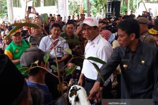 Menteri Pertanian Serahkan Bantuan Ternak di Bondowoso
