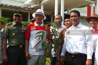 Mentan Tanam Bibit Durian