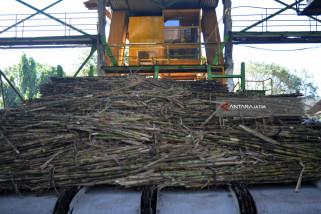 PTPN XI : Bali Potensi Punya Pabrik Gula