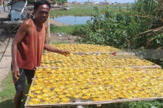Musim Kemarau, Produksi Ikan Asin di Probolinggo Meningkat