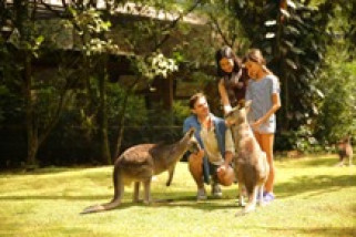 Australiana Zona Baru Andalan Taman Safari Prigen