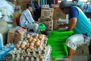Harga Telur di Bojonegoro Rp27.900/Kilogram