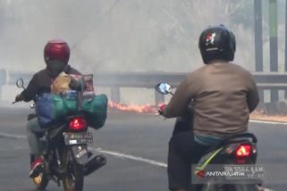 Kebakaran Hutan Baluran Situbondo Sempat Macetkan Jalur Pantura