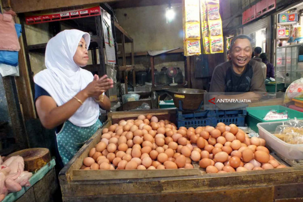 Disperindag Jember Telusuri Kenaikan Harga Telur Ayam Ras yang Tidak Wajar