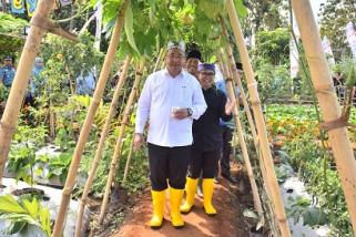 Mendes PDTApresiasi Banyuwangi Agro Expo