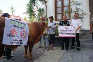 Semen Indonesia Salurkan 167 Hewan kurban
