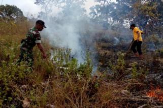 Hutan Milik Perhutani di Ponorogo Terbakar