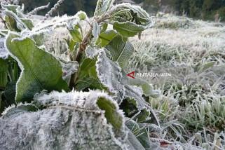 Fenomena Embun Salju di Gunung Bromo