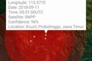 299 Titik Api Terpantau di Gunung Argopuro