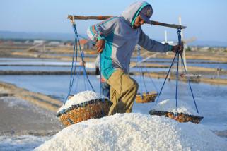 Pencapaian Produksi Garam