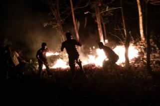 Hutan di Gunung Sadran Ponorogo Terbakar