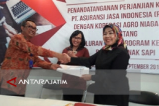Kementan Fasilitasi Kredit Peternak Sapi Kabupaten Malang
