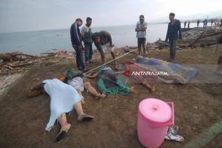 BMKG: 201 Kali Gempa Susulan Guncang Sulteng