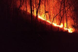 Hutan Gunung Bancak Magetan Terbakar