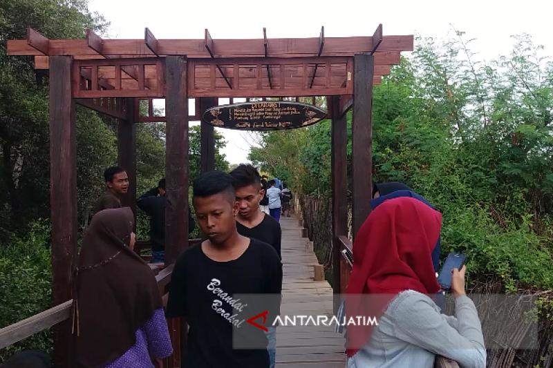 Wisata Kampung Blekok Situbondo Dikunjungi 13.500 Orang