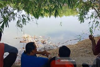 BKSDA Perkirakan Buaya di Bojonegoro dari Muara