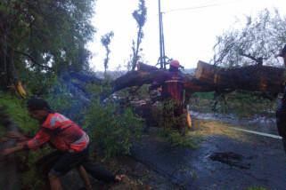 Angin Kencang Melanda Lima Kecamatan di Magetan