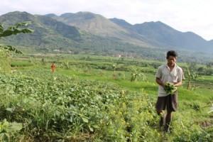 BPBD Garut: Gunung Guntur Rawan Bencana Alam