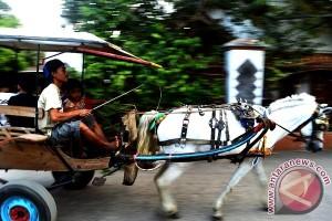 Delman Alih Fungsi Jadi Transportasi Hiburan