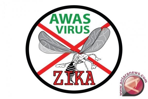Begini Cara Zika Menginfeksi Otak