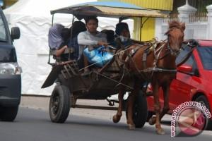 Garut Siapkan Rp500 Juta untuk Kusir Delman