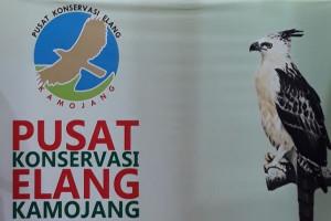 Pusat Koservasi Elang Kamojang Ditutup Akibat Angin