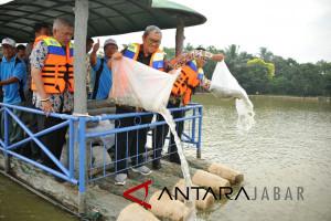 Aher targetkan sebar 100 juta benih Ikan di Jabar