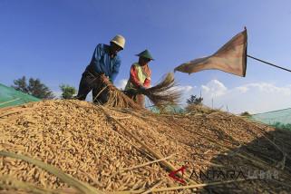 Indramayu dorong petani bisa berkoperasi
