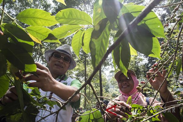 Wacana Jokowi-Moeldoko disambut positif masyarakat