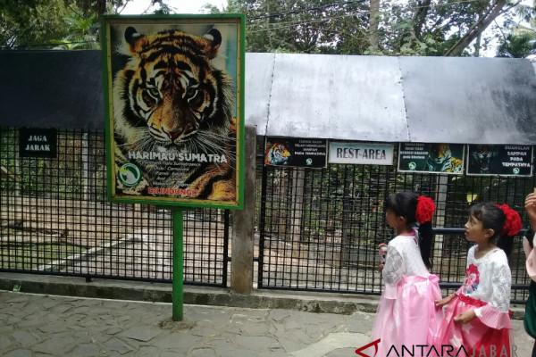 Petugas sosialisasikan pilkada di Taman Satwa Cikembulan