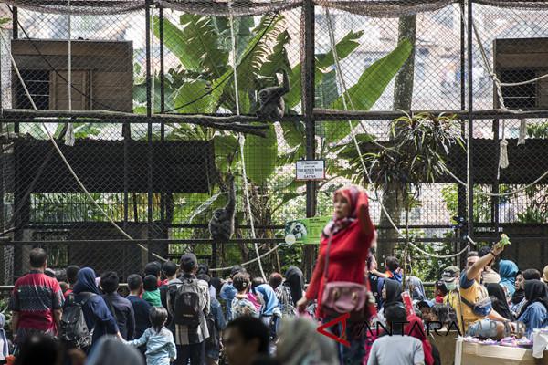 Warga padati kebun binatang Bandung
