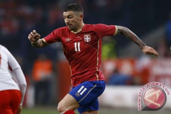 Serbia menang berkat tendangan bebas Koralov