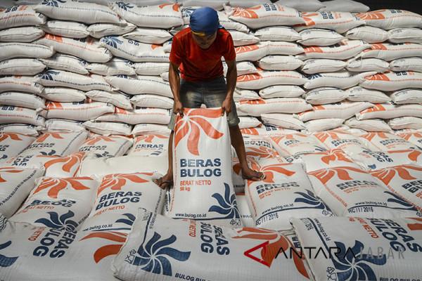 Bulog: serapan beras petani Cianjur meningkat