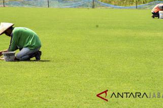 Perbaikan rumput stadion Pajajaran Bogor