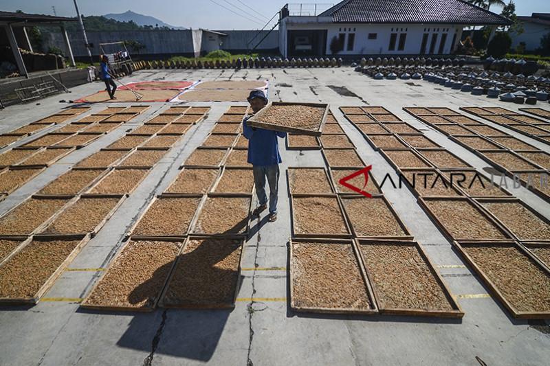 Proyeksi pertumbuhan industri makanan