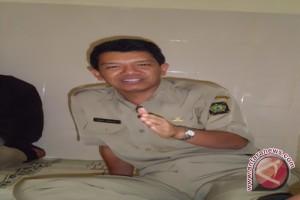 Lahan tanaman kopi di Kulonprogo diperluas