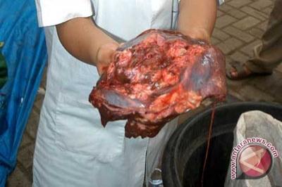Joroknya orang Bantul, Cuci Daging di Selokan Dianggap Biasa