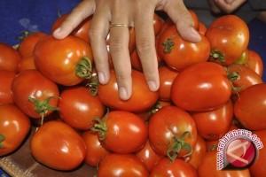 Jus Tomat Bantu Meringankan Simtom Menopause