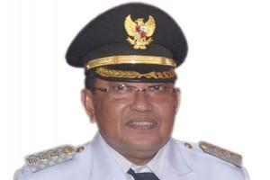 Pemkab Kubu Raya Raih DMI Award